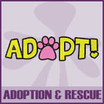 Adoption and Rescue