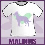 Belgian Malinois