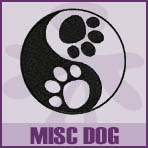 Misc Dog