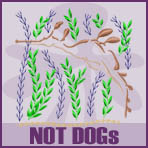 Not Dogs