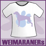 Weimaraner